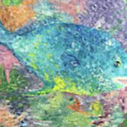 Beauty Of The Reef Art Print