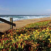Beautiful California Beach Scene And Art Print