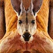 Big Boy Red Kangaroo   Art Print