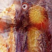 Birds Eye Art Print