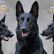 Black German Shepherd Dog Collage Art Print