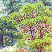 Blake Garden, Berkeley Ca Art Print