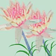 Blush Of Pink Art Print