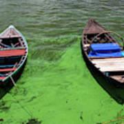 Boats On Algae, In Santarem, Brazil. Art Print