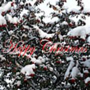 Happy Christmas 12 Art Print