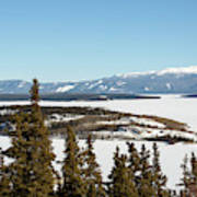 Bove Island On Windy Arm In Tagish Lake Yukon Art Print