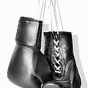 Boxing Gloves Hanging Against White Art Print