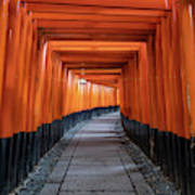 Bright Orange Torii Gates In Kyoto, Japan Art Print