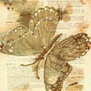 Butterfly Antiquities Art Print