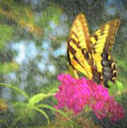 Butterfly Likeness  Art Print