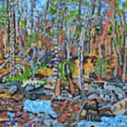 Cade's Land Trail Along The Eno Art Print