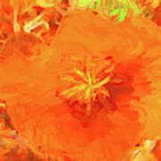 California Poppy Inside Art Print