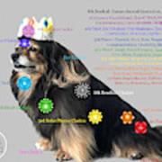Canine Chakras Art Print