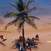 Caribe Hilton Beach Art Print