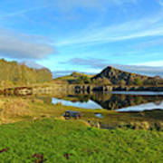 Cawfield Quarry And Hadrians Wall In Northumberland Art Print