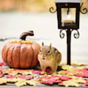 Chipmunk In The Autumn Art Print