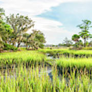 Chisolm Island - Marsh At Low Tide Art Print