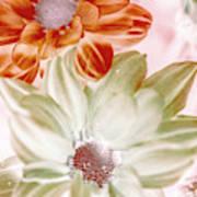 Chrysanthemum Creativity Art Print