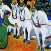 Circus Horses Dressage Art Print