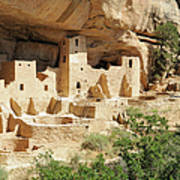 Cliff Palace In Mesa Verde, Colorado Art Print