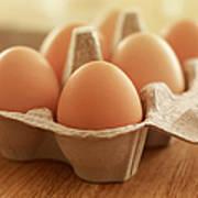 Close Up Of Brown Eggs In Carton Art Print