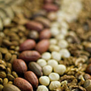 Close Up Of Variety Of Nuts Art Print