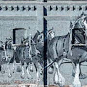 Clydesdale Mural Art Print