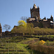 Cochem Castle And Vineyard In Germany Art Print