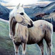 Cochise Art Print