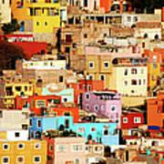 Colors On Hill Art Print