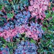 Cozy Hydrangeas Art Print