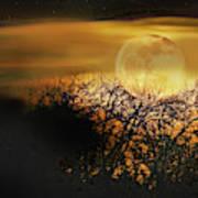 Crows Nest Full Moon Art Print