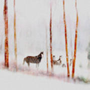 Curious Visitors Art Print