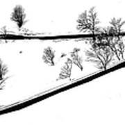 Curved Light Trails Art Print