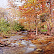 Cypress Creek As It Exits Blue Hole Regional Park In Wimberley, Hays County Texas Hill Country Art Print