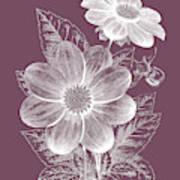 Dahlias Purple Flower Art Print