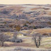 Dakota Prairie Slope Reverie Art Print