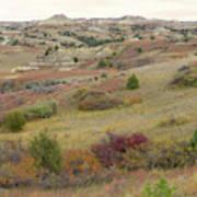 Dakota West Prairie Treasure Art Print