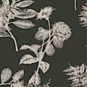 Dark Botanics  Art Print