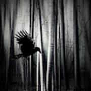 Darker - Raven Art Print