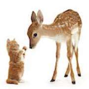 Deer Little Friend Art Print