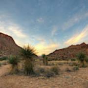 Desert Hike Art Print