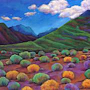 Desert Valley Art Print
