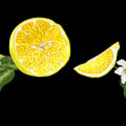 Digital Citrus Art Print