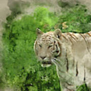 Digital Watercolor Painting Of Beautiful Portrait Image Of Hybri Art Print