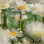 Digital Watercolor Painting Of Wild Daisy Flowers In Wildflower  Art Print
