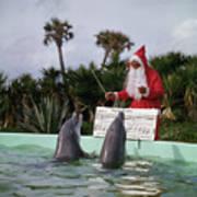 Dolphins Singing For Santa Claus Art Print