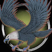 Eagle Illustration  Art Print