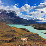 Early Autumn In Patagonia. National Art Print