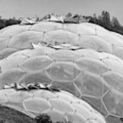 Eden Project Biome  Art Print